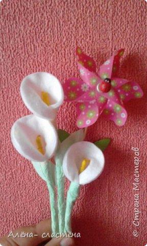 Цветы из ватных дисков и ватных палочек фото 1