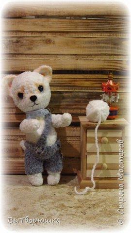 Соскучилась я что-то по крючку и ниточкам.... И вот что у меня навязалось....))) Зовут нас Снежок... Мы прям породистые-породистые чихуахуа... Правда еще маленькие... Зато очень мягкие, плюшевые и добрые...))))) фото 4