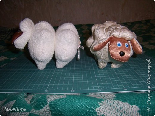 Котики и  овечки фото 3