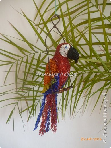 Большой попугай из бисера на каркасе фото 1