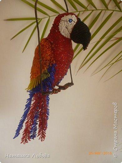 Большой попугай из бисера на каркасе фото 6