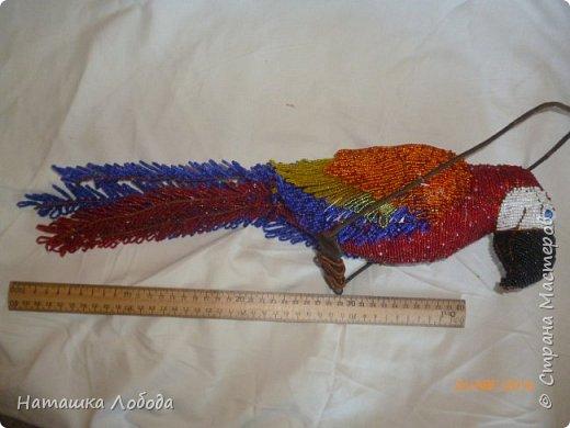 Большой попугай из бисера на каркасе фото 7