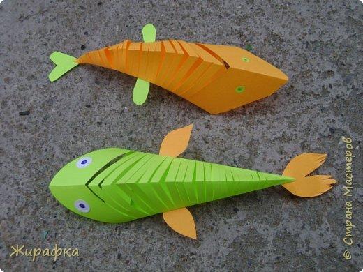 Посмотрела на этих рыбок и увидела сходство с карпами кои. фото 27