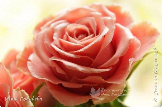 """Девочки,привет! Заказали мне вот такие розы кораллового цвета. Как я получила такой цвет,я покажу и расскажу) А еще сегодня планирую выложить мастер- класс по половинке лимона- апельсина( почти дофоткала). Не пропустите,так как он попадает в раздел """" Поделка,изделие"""" и высвечиваться в данном разделе не будет) фото 6"""