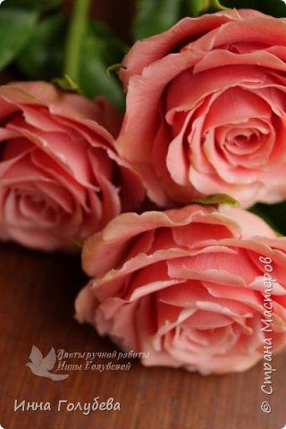 """Девочки,привет! Заказали мне вот такие розы кораллового цвета. Как я получила такой цвет,я покажу и расскажу) А еще сегодня планирую выложить мастер- класс по половинке лимона- апельсина( почти дофоткала). Не пропустите,так как он попадает в раздел """" Поделка,изделие"""" и высвечиваться в данном разделе не будет) фото 11"""