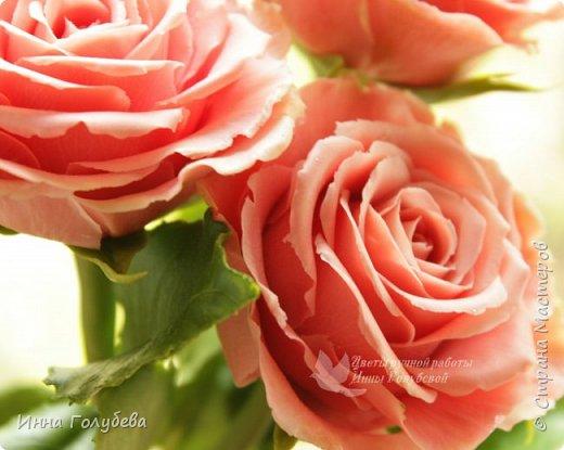 """Девочки,привет! Заказали мне вот такие розы кораллового цвета. Как я получила такой цвет,я покажу и расскажу) А еще сегодня планирую выложить мастер- класс по половинке лимона- апельсина( почти дофоткала). Не пропустите,так как он попадает в раздел """" Поделка,изделие"""" и высвечиваться в данном разделе не будет) фото 13"""