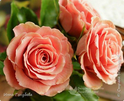 """Девочки,привет! Заказали мне вот такие розы кораллового цвета. Как я получила такой цвет,я покажу и расскажу) А еще сегодня планирую выложить мастер- класс по половинке лимона- апельсина( почти дофоткала). Не пропустите,так как он попадает в раздел """" Поделка,изделие"""" и высвечиваться в данном разделе не будет) фото 1"""