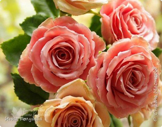 """Девочки,привет! Заказали мне вот такие розы кораллового цвета. Как я получила такой цвет,я покажу и расскажу) А еще сегодня планирую выложить мастер- класс по половинке лимона- апельсина( почти дофоткала). Не пропустите,так как он попадает в раздел """" Поделка,изделие"""" и высвечиваться в данном разделе не будет) фото 2"""