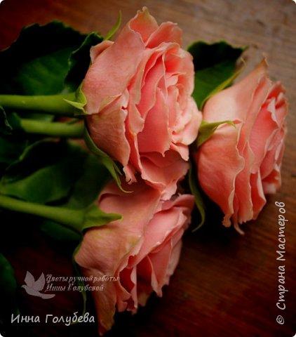 """Девочки,привет! Заказали мне вот такие розы кораллового цвета. Как я получила такой цвет,я покажу и расскажу) А еще сегодня планирую выложить мастер- класс по половинке лимона- апельсина( почти дофоткала). Не пропустите,так как он попадает в раздел """" Поделка,изделие"""" и высвечиваться в данном разделе не будет) фото 5"""