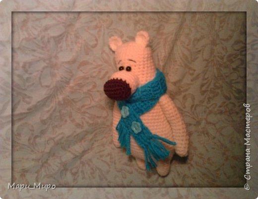 Белый мишка фото 3