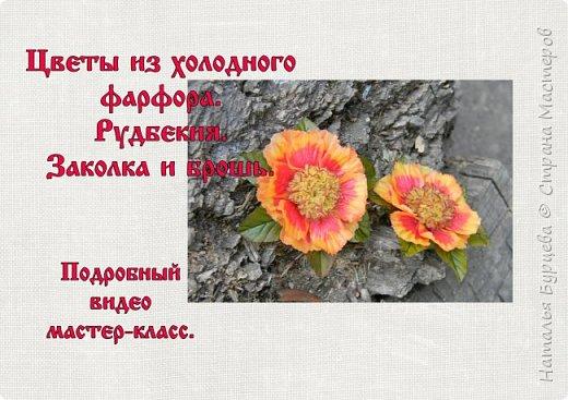 Здравствуйте! Люблю яркие, сочные цветы. Один из таких цветов- рудбекия. Разновидностей её много. Вот такими они получились в моей интерпретации)).   фото 1