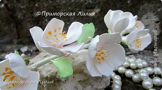 Лето заканчивается, а у меня цветет яблоня))) фото 3