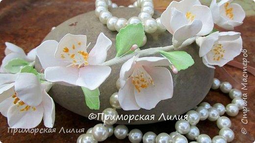 Лето заканчивается, а у меня цветет яблоня))) фото 2