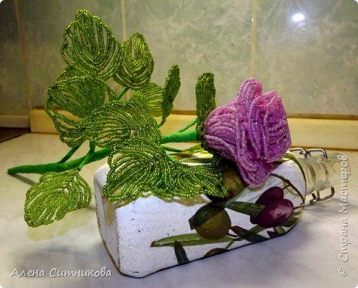 Бокаловидная роза фото 2