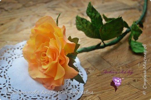 """Вот такое роза """"Персик"""" у меня получилась)) фото 2"""