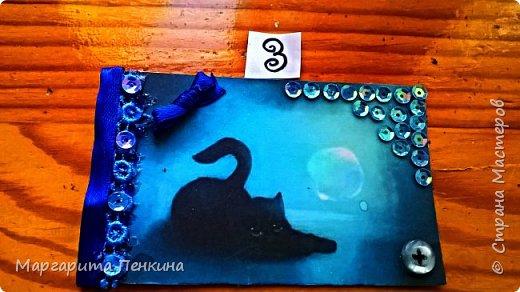 """Всем доброго времени суток! Вот моя новая серия АТС! (Когда-то пробовала, но не выкладывала) Называется """"Кошки в лунном свете""""  №1-Alyona The Monster №2-оставлю себе. №3-Подарок для Даши(ёжик из мира миниатюры). фото 4"""