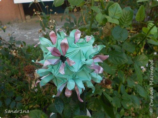 кусудама Kiyoko- Flaviane Koti и Passiflora фото 13