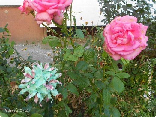 кусудама Kiyoko- Flaviane Koti и Passiflora фото 12