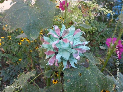 кусудама Kiyoko- Flaviane Koti и Passiflora фото 10