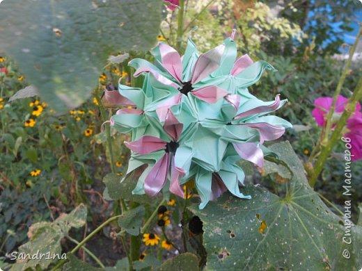 кусудама Kiyoko- Flaviane Koti и Passiflora фото 8
