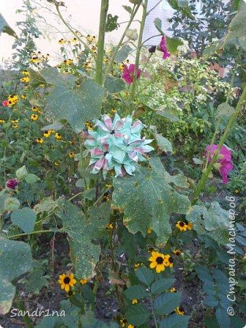 кусудама Kiyoko- Flaviane Koti и Passiflora фото 9