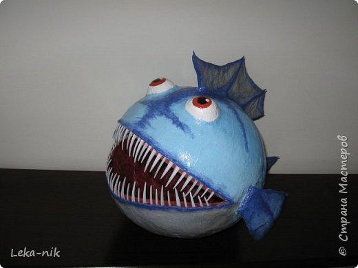рыб фото 3