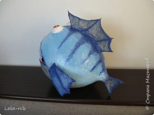 рыб фото 2