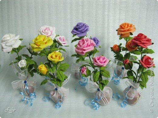 роза праздничная  фото 2