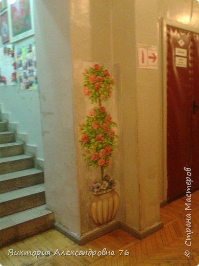 Такое живое розовое дерево поселилось в рекреации нашего учебного заведения. фото 2