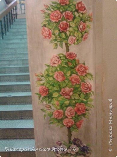 Такое живое розовое дерево поселилось в рекреации нашего учебного заведения. фото 4