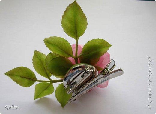 Всем привет!     Кадупул (Королева ночи) — уникальный цветок островов Шри-Ланки. Путешественники и туристы со всех концов света приезжают на эти острова, чтобы посмотреть на этот восхитительный цветок, имеющий свою легенду. Говорят, что в ночь, когда эти цветы распускаются, на землю спускаются мифические существа, полубоги со змеиным туловищем (Наги), чтобы сорвать самый прекрасный цветок в мире и преподнести его в дар Будде.   фото 7