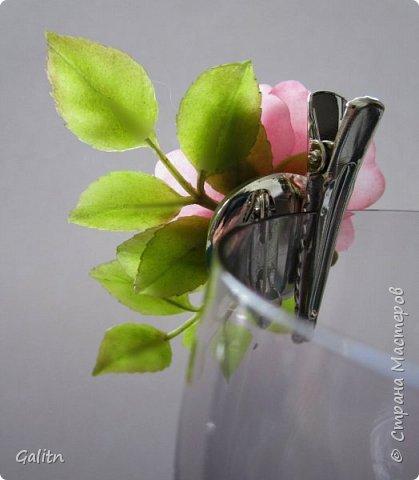 Всем привет!     Кадупул (Королева ночи) — уникальный цветок островов Шри-Ланки. Путешественники и туристы со всех концов света приезжают на эти острова, чтобы посмотреть на этот восхитительный цветок, имеющий свою легенду. Говорят, что в ночь, когда эти цветы распускаются, на землю спускаются мифические существа, полубоги со змеиным туловищем (Наги), чтобы сорвать самый прекрасный цветок в мире и преподнести его в дар Будде.   фото 9