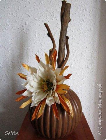 Всем привет!     Кадупул (Королева ночи) — уникальный цветок островов Шри-Ланки. Путешественники и туристы со всех концов света приезжают на эти острова, чтобы посмотреть на этот восхитительный цветок, имеющий свою легенду. Говорят, что в ночь, когда эти цветы распускаются, на землю спускаются мифические существа, полубоги со змеиным туловищем (Наги), чтобы сорвать самый прекрасный цветок в мире и преподнести его в дар Будде.   фото 2
