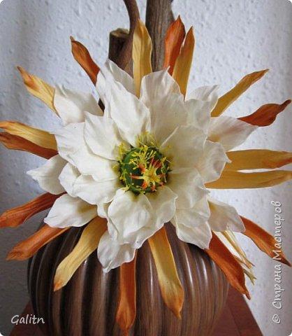Всем привет!     Кадупул (Королева ночи) — уникальный цветок островов Шри-Ланки. Путешественники и туристы со всех концов света приезжают на эти острова, чтобы посмотреть на этот восхитительный цветок, имеющий свою легенду. Говорят, что в ночь, когда эти цветы распускаются, на землю спускаются мифические существа, полубоги со змеиным туловищем (Наги), чтобы сорвать самый прекрасный цветок в мире и преподнести его в дар Будде.   фото 1