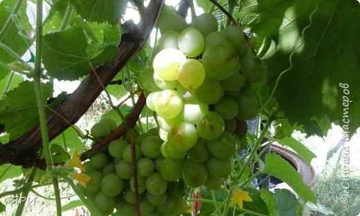 Август - очень знойный, но щедрый на урожай фруктов. Скромный декор досочки и вышитое яблочко на канве Аида-14. фото 10