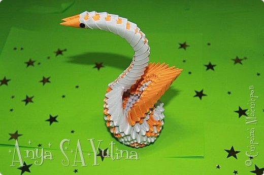 Здравствуйте) Сейчас я вам расскажу и покажу, как делать этого красивого лебедя техникой модульное оригами. Чтобы посмотреть урок, спуститесь чуть ниже по странице:) фото 5