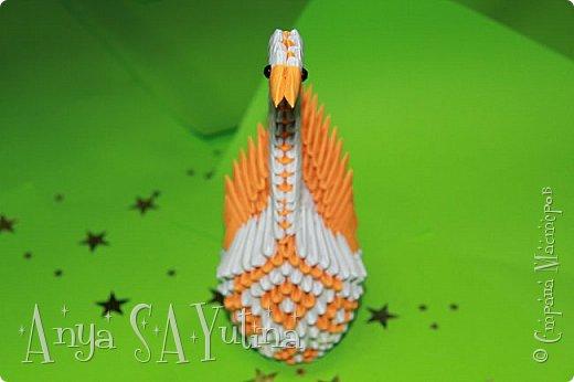Здравствуйте) Сейчас я вам расскажу и покажу, как делать этого красивого лебедя техникой модульное оригами. Чтобы посмотреть урок, спуститесь чуть ниже по странице:) фото 3