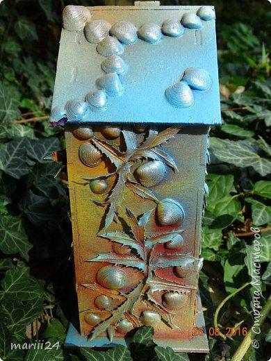 Добрый день уважаемые жители СМ. Сегодня выложу 3 новых чайных домика - экспериментальные. Первые два сделаны с использованием природных материалов, а проще - колючек, травок и цветочков с горки за домом и ракушек с пляжа. фото 8