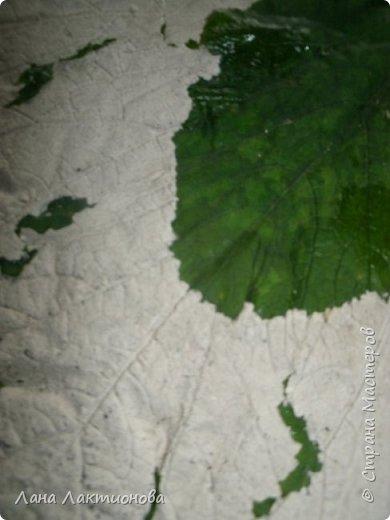 Добрый день.Насмотрелась я красивых листьев из гипса у наших мастериц - Анны Вятской,  Таня5,  и решила  себе сделать, работа эта кропотливая, пока приловчишься, два листа расколола, а вот в этом кусочек отлетел когда переворачивала, но я приклеила на клей Дракон, а с обратной стороны промазала еще гипсом - не видно. фото 4