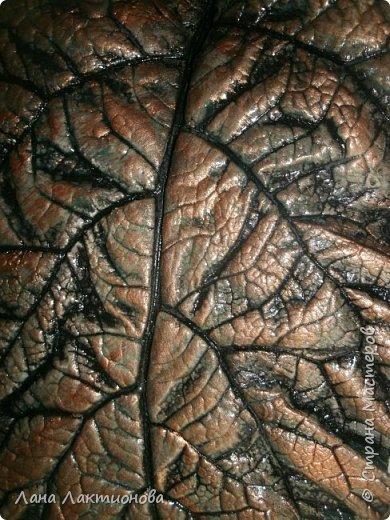 Добрый день.Насмотрелась я красивых листьев из гипса у наших мастериц - Анны Вятской,  Таня5,  и решила  себе сделать, работа эта кропотливая, пока приловчишься, два листа расколола, а вот в этом кусочек отлетел когда переворачивала, но я приклеила на клей Дракон, а с обратной стороны промазала еще гипсом - не видно. фото 6
