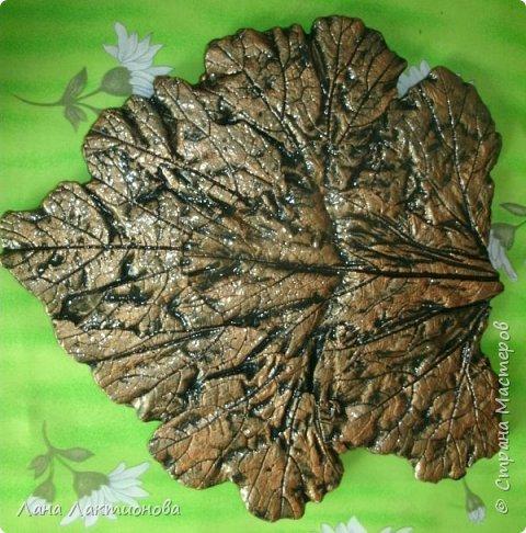 Добрый день.Насмотрелась я красивых листьев из гипса у наших мастериц - Анны Вятской,  Таня5,  и решила  себе сделать, работа эта кропотливая, пока приловчишься, два листа расколола, а вот в этом кусочек отлетел когда переворачивала, но я приклеила на клей Дракон, а с обратной стороны промазала еще гипсом - не видно. фото 2