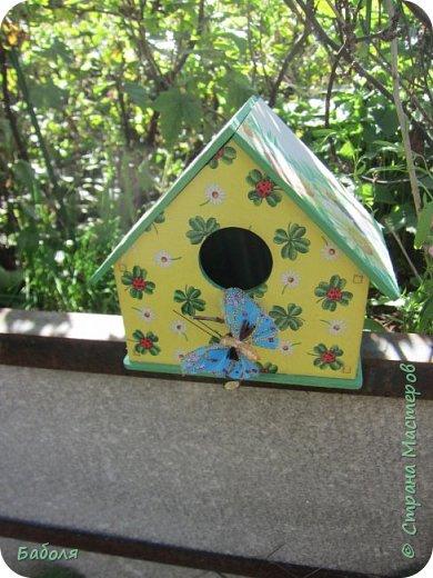 Птичьи домики фото 3