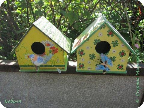 Птичьи домики фото 1