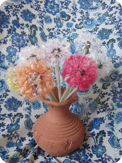 Разноцветные одуванчики. фото 2