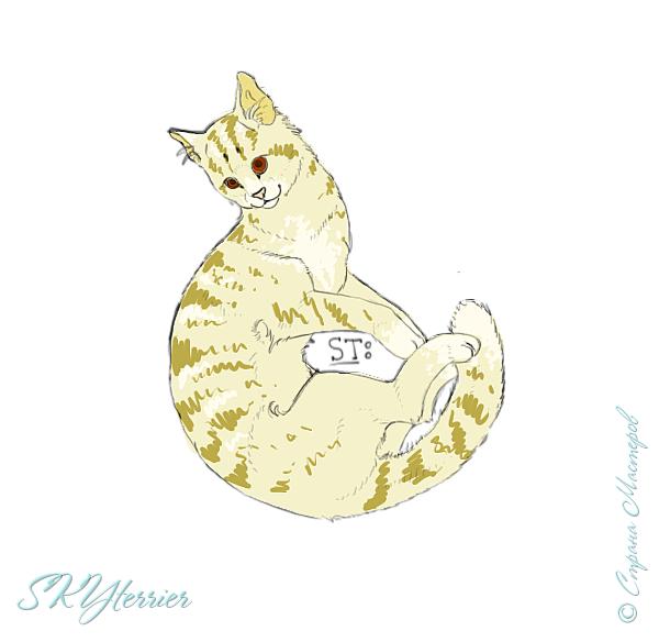 У меня маленькая радость - подарили графический планшет! :) Странно, но я пока рисовала на компьютере только кошек и собак... Сама не знаю почему))) фото 1