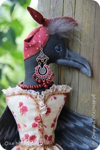ПрЭлестная ворона Карлетта фото 1