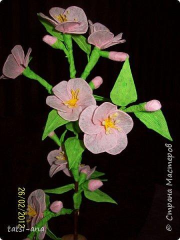 Цветы из гофрированной бумаги фото 1
