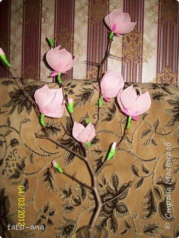 Цветы из гофрированной бумаги фото 5