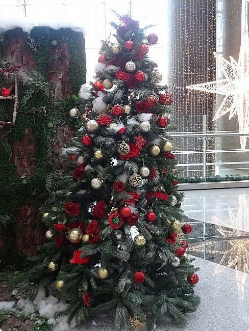 Здравствуй Ёлка - Новый год!!!! ч.3 (2015-2016) фото 5