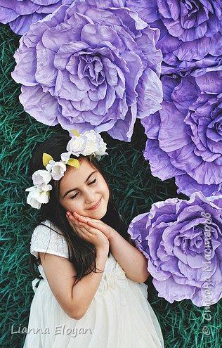 Цветы  с диаметром 45см 120штук  для фотопроекта Анастасии Панеевой  https://vk.com/paneeva фото 18